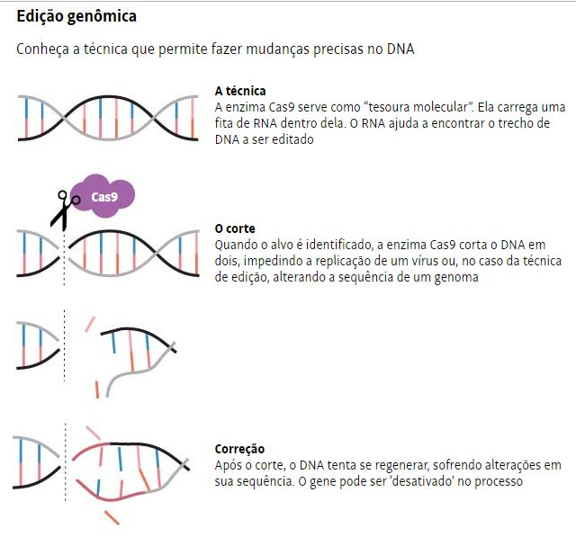 Sequenciamento de DNA - Super Humanos (3)